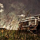 Out to Pasture by welchko