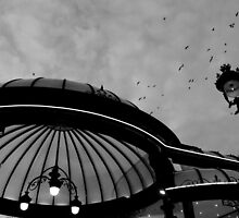 Birds over Divonne Casino by Michelle Neeling