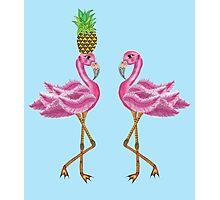 burlesque flamingos Photographic Print