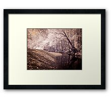 Never Never Creek Framed Print