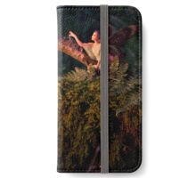 The Magic Hour iPhone Wallet/Case/Skin