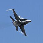 F18 Hornet by PhilEAF92