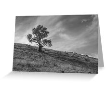 Tree on a Hill Greeting Card