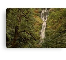 And Another Oregon Waterfall ©  Canvas Print