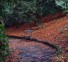 Autumn Park Bench by Beverly Watson