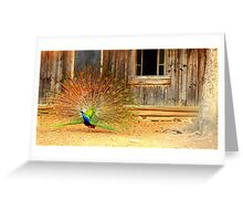 A peacock, a tree and a window Greeting Card
