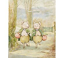 2 little pigs by Beatrix Potter Photographic Print