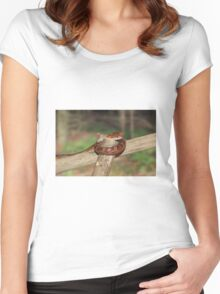 Corn Snake Women's Fitted Scoop T-Shirt