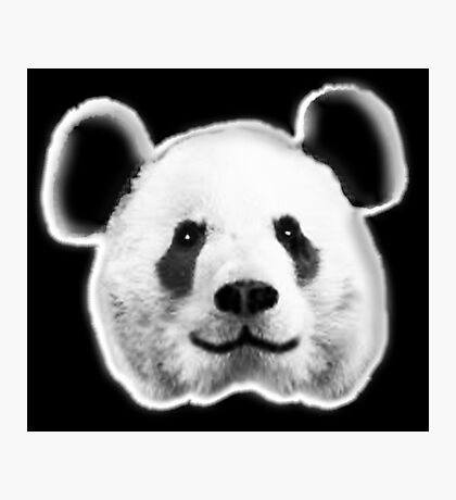 GIANT, PANDA, SMILEY, HAPPY, FACE, BEAR, WILDLIFE, ENDANGERED, Eco, Ecology, Nature Photographic Print