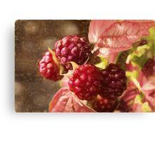 painted raspberries Canvas Print