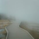 Misty Boardwalk by debidabble