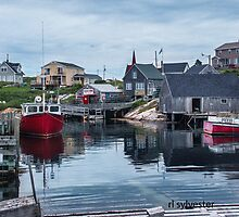 Pegggies Cove Nova Scotia  by browncardinal8