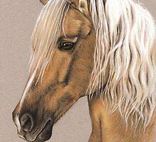 Spanish Horse - Berber Pferd by Nicole Zeug