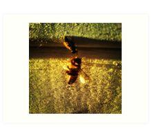 """Beekeeper"" Art Print"