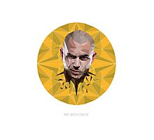 Vector Celebrities - Pitbull Photographic Print