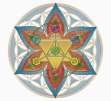 Merkaba, Chakras, Flower Of Life, Metatrons Cube, Sacred Geometry by nitty-gritty