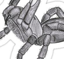 Free hugs spider Sticker