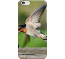 Welcome Swallow iPhone Case/Skin