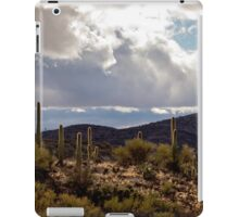 View From Colossal Cave iPad Case/Skin