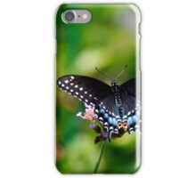 Black Swallowtail iPhone Case/Skin
