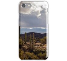 View From Colossal Cave iPhone Case/Skin