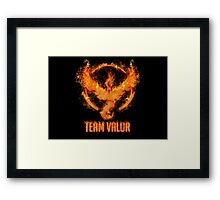 Valor Framed Print
