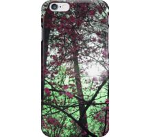 Colourful, Mystical Trees iPhone Case/Skin