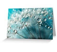 Indigo with White Sparkles Greeting Card