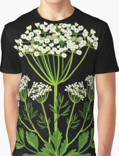 Anise Graphic T-Shirt
