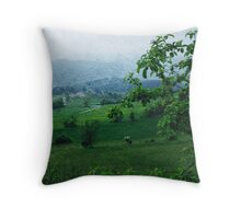 Countryside Landscape Print Throw Pillow