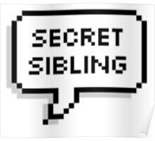 Secret Sibling Poster