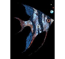 Angelfish in Space Photographic Print