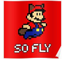 Mario is So Fly 2 Poster