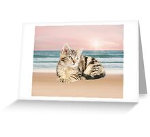Striped Cat Sitting on Beach sunset Oil Painting Greeting Card