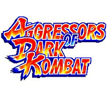Aggressors of Dark Kombat Photographic Print