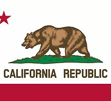 Califfornia State Flag by Carolina Swagger