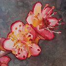 Cherry Blossoms by Sandrine Pelissier