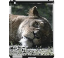 Sleepy iPad Case/Skin