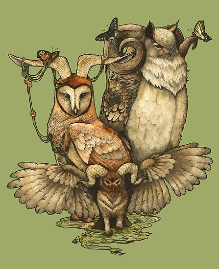 Goatowls (colour) by Zuzanna Krolik