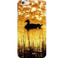 Reflecting On Nature iPhone Case/Skin