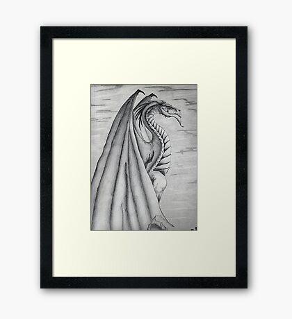 White and Black Dragon. Framed Print