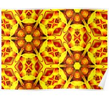 Kaleidoscope Geometry Pattern From Nature 25 Poster