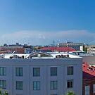 Charleston Panoramic Photograph by Patrick Brickman