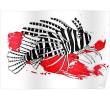 Lion fish on red background Poster
