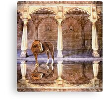 Horse of Glassy Floor Canvas Print