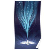 Night Owl 2 Poster