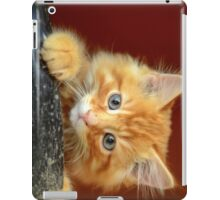 Ginger Kitten iPad Case/Skin