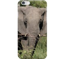 Elephant Ears iPhone Case/Skin