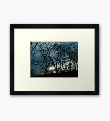 Blue & Yellow Color Sky Sunset Tree Silhouette Framed Print