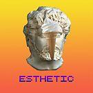ESTHETIC by slugspoon